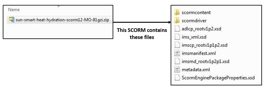 Files inside of a SCORM Package