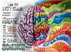 Split-Brain Theory