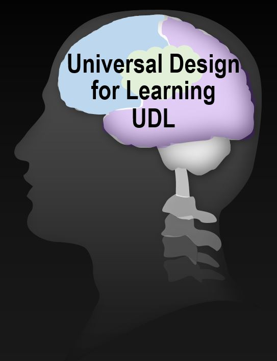 What Is Universal Design Learning Udl Brain Based Practical